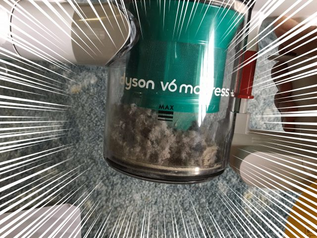 ダイソン2回目掃除結果アップ写真