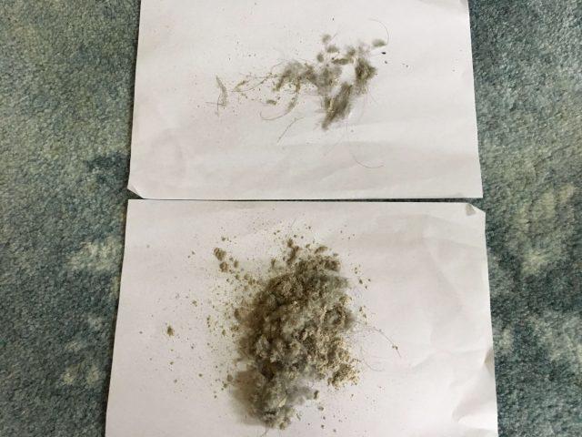 日立とダイソン2回目の掃除結果比較写真