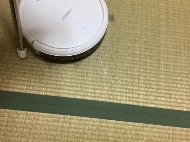 畳の上のゴミの写真