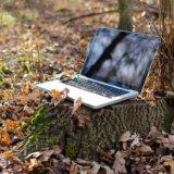 森の中のパソコン